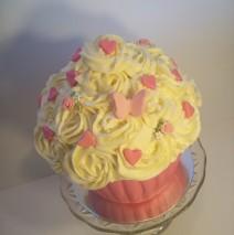 Giant Cupcake $199