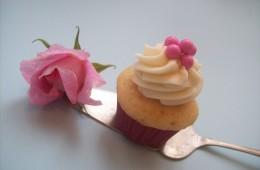Mini Pink Sherbet & Vanilla Bean $3 each