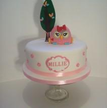 Owl Cake $295