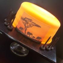 Safari Cake $165