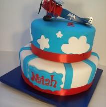 Aeroplane Cake $349