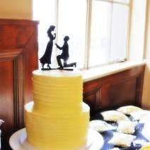 Engagement Cake $249