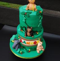 Jungle Cake $395