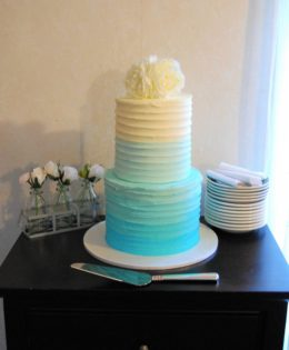 Ombre Cake 4 layer $395