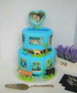 Farm Cake $399