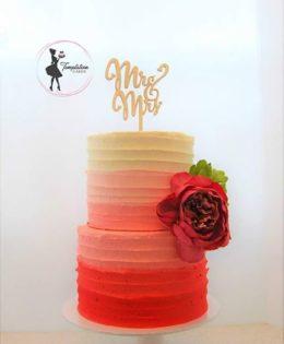 Vegan Wedding Cake Ombre $295